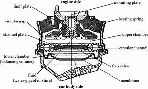 Structure Of A Hydraulic Engine Mount