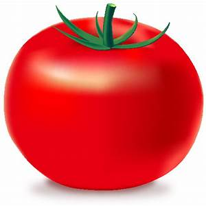RED TOMATO Icon(Vegetable) | SVG(VECTOR):Public Domain ...