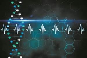 The Genetics Of Heart Disease  An Update