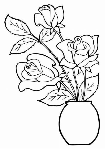 Coloring Rose Roses Pages Pot Three Printable