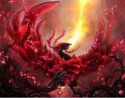 Dragon Rose Wallpapers Cave Wallpapertag