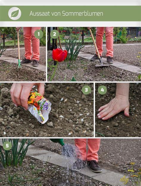 Blumenzwiebeln Einpflanzen Der Herbst Ist Die Richtige Zeit by Wann Tulpenzwiebeln Pflanzen Tulpenzwiebeln Pflanzen