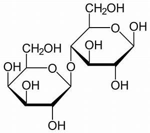 Lactose intolerance - Wikipedia Lactose Intolerance