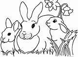 Coloring Worm Bunny Inch Easter Inchworm Printable Template Cartoon Google Sheet Preschool Rabbit Firefox Sketch Colouring sketch template