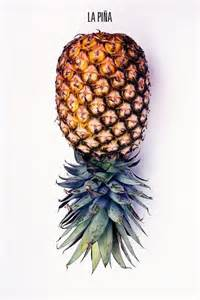 Pineapple Still Life Photography