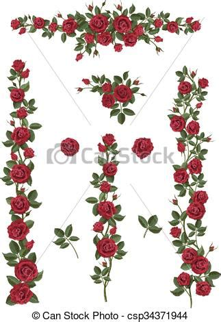 climbing roses clipart clipground