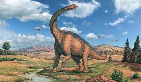 dinosaur sauropoda picture dinosaur pictures dinosaur