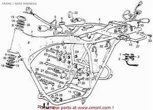 Honda Cl360 Scrambler 360 K0 1974 Usa Frame    Wire Harness