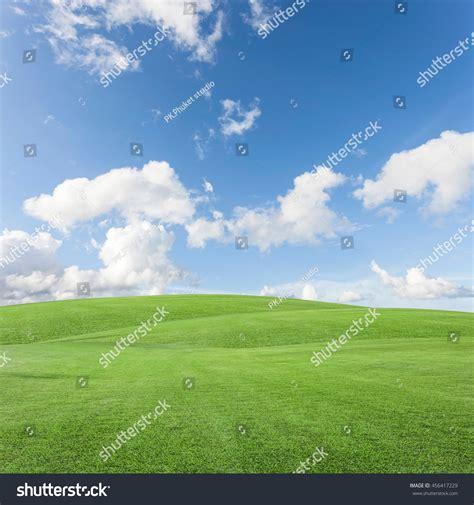 green grass field blue sky scenery stock photo