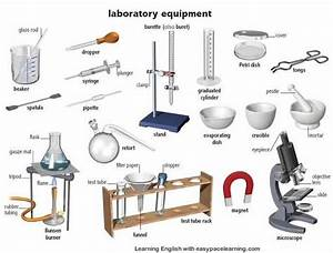 What Are Some Of The Basic Laboratory Tools And Apparatus