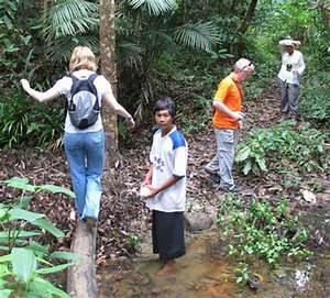 Kayak nature tours   Jungle Trekking