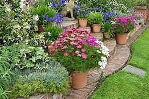 Winterharte Blumen Für Den Garten : beetpflanzen wolfsburg balkonblumen terrassenpflanzen winterharte stauden ~ Whattoseeinmadrid.com Haus und Dekorationen