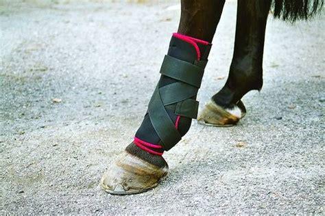 tsm bandagen fuer das fesselgelenk hinten bei pferden