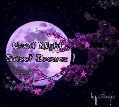 Dreams Sweet Night Gifs Animated Tenor Goodnight
