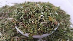 Gotu Kola Tea  5 Sachets     Rimba Bliss Herbal Remedy