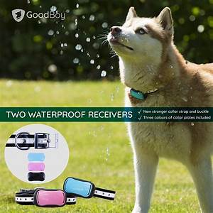 Invisible In Ground Electric Fence For Dogs  U00e2 Simple Do