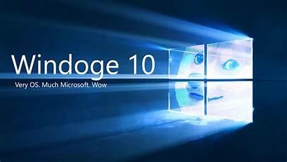 Doge Memes Windows Microsoft Wallpapers Shiba Inu