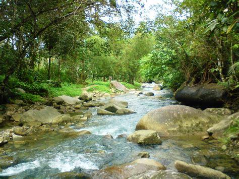 Herunterladen Ekosistem Alami Dan Buatan Beserta Contoh Tiononraini