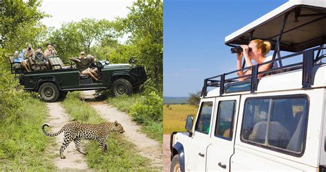 How To Choose Your Ideal Safari