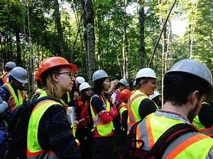 Courses And Structure Forestry