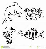 Coloring Fish Crab Seahorse Marine Dolphin sketch template