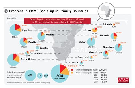 Progress In Vmmc Scale-up In Priority Countries