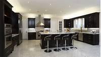 black cabinets in kitchen 52 Dark Kitchens with Dark Wood OR Black Kitchen Cabinets (2019)