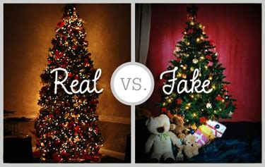 christmas tree facts real  artificial big blog  gardening