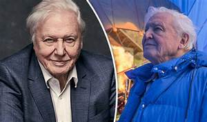David Attenborough in pop at Simon Cowell as X Factor is ...
