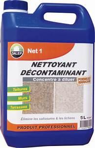 Comment Nettoyer Du Zinc : produit de nettoyage pour toiture rev tements modernes du toit ~ Melissatoandfro.com Idées de Décoration