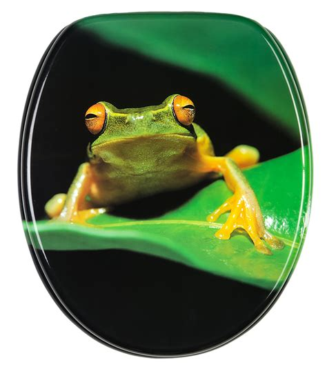 Green Frog Potty Chair by Toilet Seat Green Frog