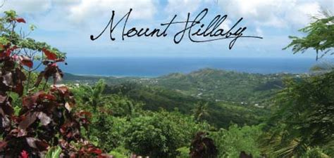 mount hillaby barbados pocket guide