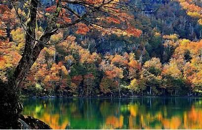 Desktop Bing Fall Mountain Landscape Forest Nature