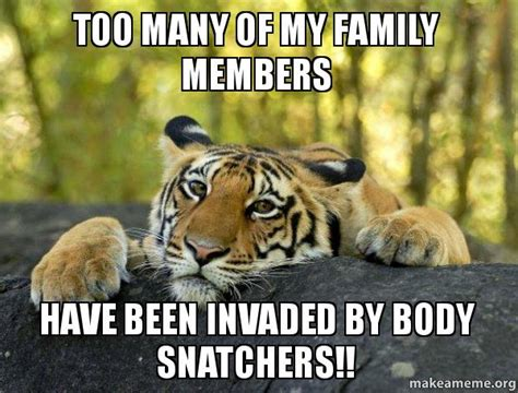 Terrible Tiger Meme - confession tiger meme memes