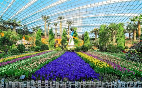 """""""gardens By The Bay + Sightseeing Tour"""" Saver Pass"""