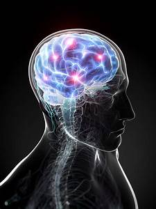 Human Consciousness Is Linked To The Laws Of The Universe