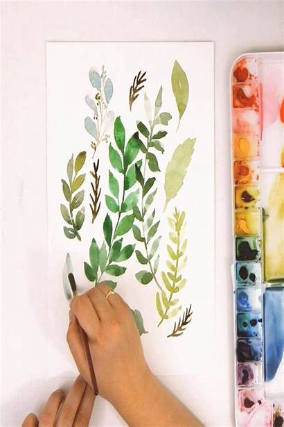 Watercolor Paint Ferns Leaves Easy Painting Learn