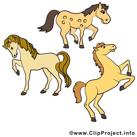 pferde clipart