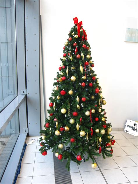 christmas tree hire  birmingham services office