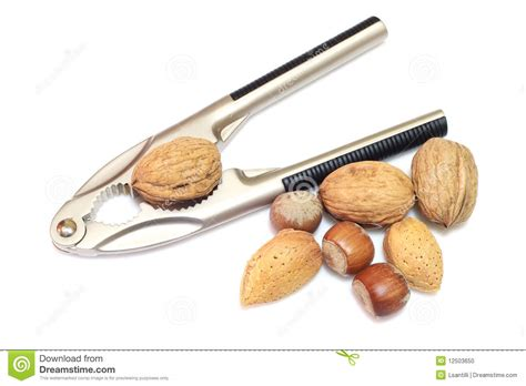 nutcrackers with nuts stock photo image of hazelnut