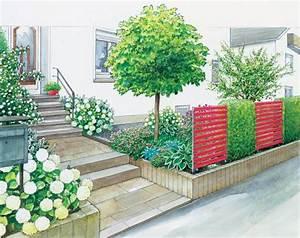 Große Zimmerpflanzen Pflegeleicht : gartenideen f r einen pflegeleichten vorgarten mein sch ner garten ~ Markanthonyermac.com Haus und Dekorationen
