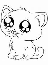 Coloring Cats Printable Mycoloring sketch template