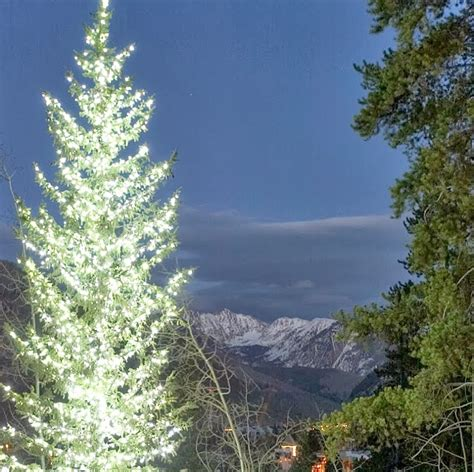 the range tree lights 28 images vail valley tree