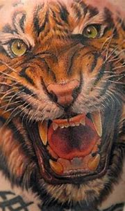 15+ Angry Tiger Tattoo Designs and Ideas | PetPress