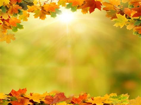 Autumn Leaves Fall Backgrounds Powerpoint by Background With Autumn Leaves Backgrounds For