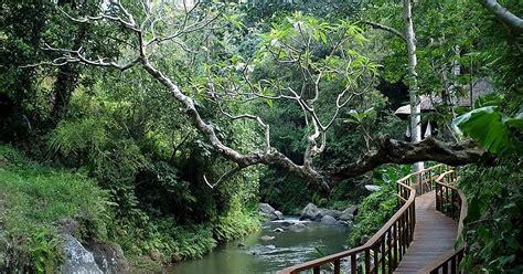 indonesia attractions ubud bali