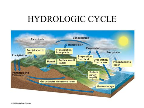 Pictures Of Rain Clouds Biogeochemical Cycles Ppt Video Online Download