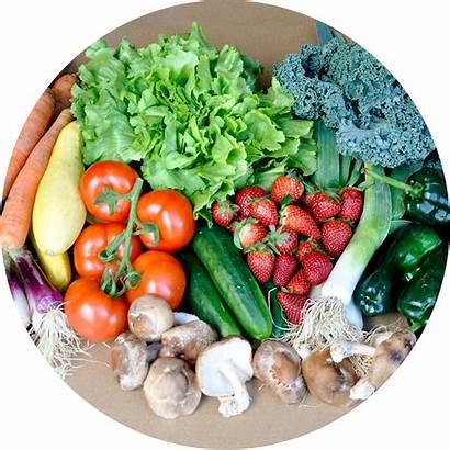 Vegetables Basket Vegetable Clipart Fruits Transparent Fruit