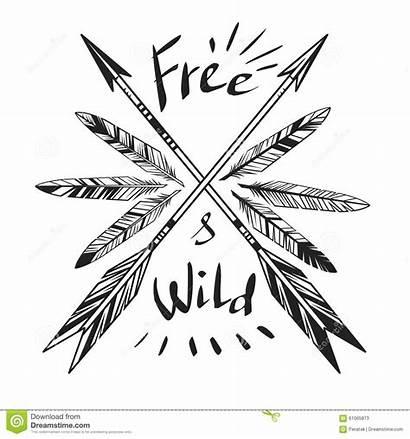 Wild Arrows Feathers Frei Template Arrow Selvaggio