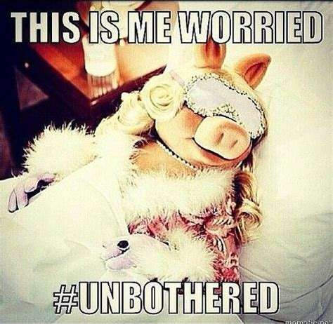 Kermit And Miss Piggy Meme - this is me worried unbothered quotes pinterest memes kermit and humour